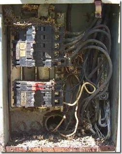 Corrosion in Electrical Panel